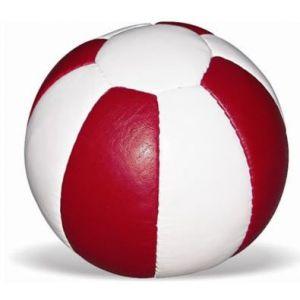 Bola Medicinal (Medicine Ball) de Couro 6kg Vinex