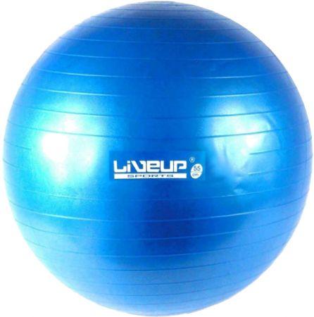 Bola de ginástica (gym ball) 65cm Premium Live Up