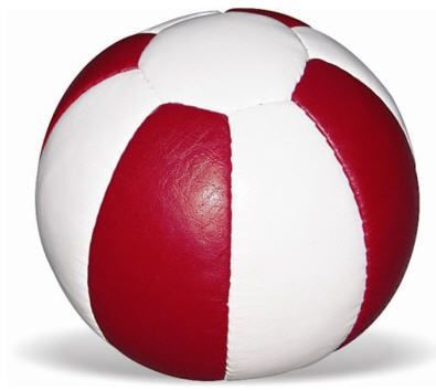 Bola Medicinal (Medicine Ball) de Couro 1kg Vinex
